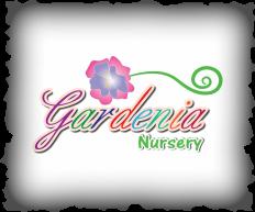 Gardenia Nursery The Greens Dubai