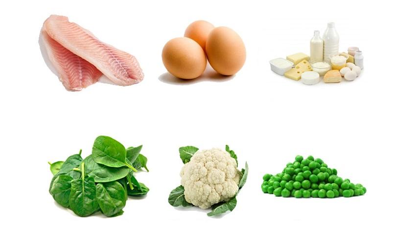 Proteins For Kids Body Building Nutrient Uaenurseries Ae